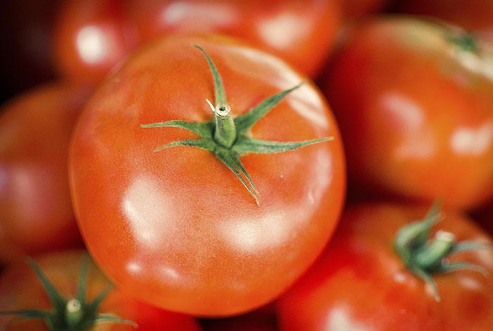 Manchas de Tomate